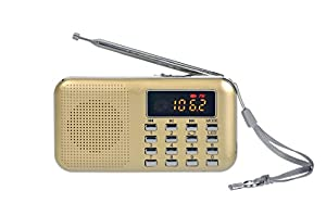Portable Am Fm Radio Mp3 Music Player Speaker Support Micro Sd/TF Card with LED Screen Display (Gold)