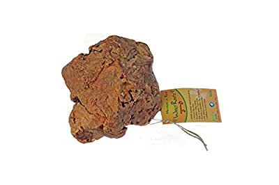 Tree Root Dog Chew Toy for Dogs - 100% natural - Large size