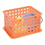 InterDesign Spa Basket, Small, Tango