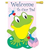 Friendly Frog Decorative Banner