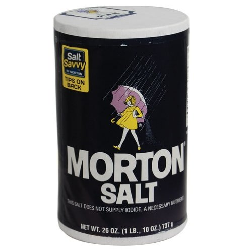 Safety Technology Ds-Morton Diversion Safe - Morton Salt