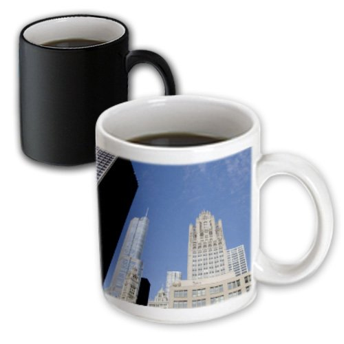 Danita Delimont - Chicago - Usa, Illinois, Chicago, Tribune Tower - Us14 Cmi0041 - Cindy Miller Hopkins - 11Oz Magic Transforming Mug (Mug_144396_3)