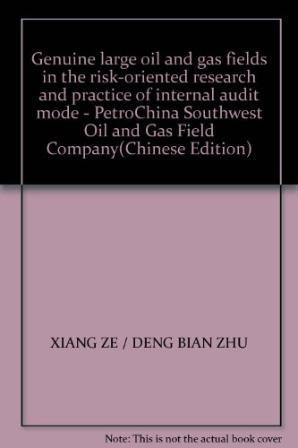 genuine-large-oil-and-gas-fields-in-the-risk-oriented-research-and-practice-of-internal-audit-mode-p