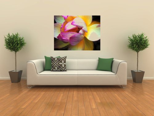 Wall Decals Lotus
