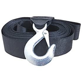 Curt Manufacturing 29007 2 In 20 Ft Nylon Winch Strap With Hook