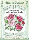 Nigella - Mulberry Rose Seeds