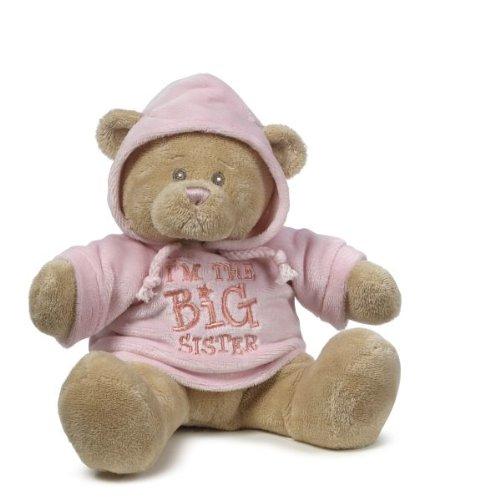 Baby Ganz Hoodie Bear - Big Sister
