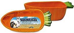 Super Pet Vege-T-Bowl Carrot Garden Shaped Bowl Ceramic Clean Dishwasher Safe