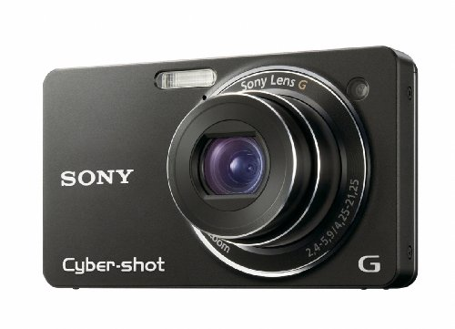 Sony Cybershot DSC-WX1 is one of the Best Ultra Compact Point and Shoot Digital Cameras for Travel, Action, and Low Light Photos Under $400