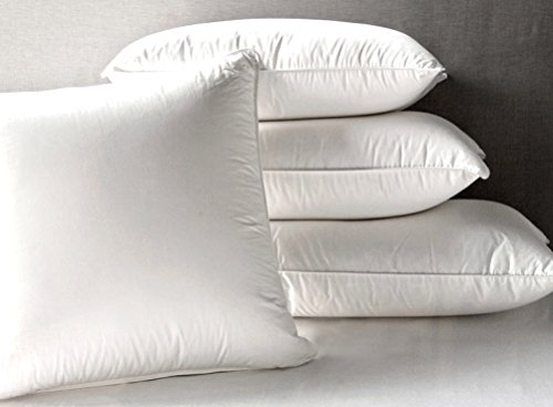 Cheapest Prices! Feather & Down Pillows-High Quality-Exclusively by Blowout Bedding RN# 142035 - Sta...
