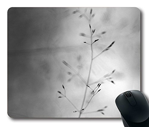 Custom-Gaming-Mouse-Pad-with-Butterfly-Park-White-Nature-Flower-Nature-Non-Slip-Neoprene-Rubber-Standard-Size-9-Inch220mm-X-7-Inch180mm-X-18-Inch3mm-Desktop-Mousepad-Laptop-Mousepads-Comfortable-Compu