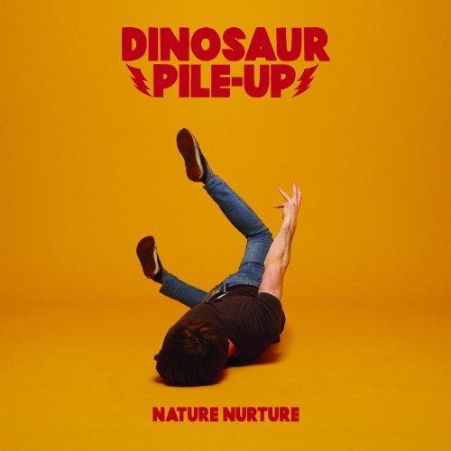 Nature Nurture by Dinosaur Pile-Up (2013) Audio CD