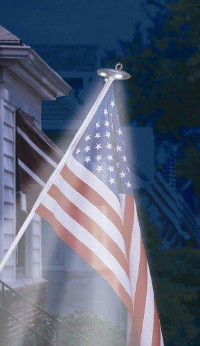 Annin Flagmaker 2804 Solar Led Pole Light, Mini Outdoor/Garden/Yard Maintenance (Patio & Lawn Upkeep)