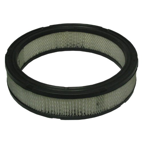 Ecogard XA45 Air Filter