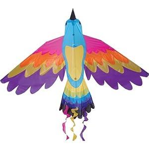 Bird Kite, Paradise, 70