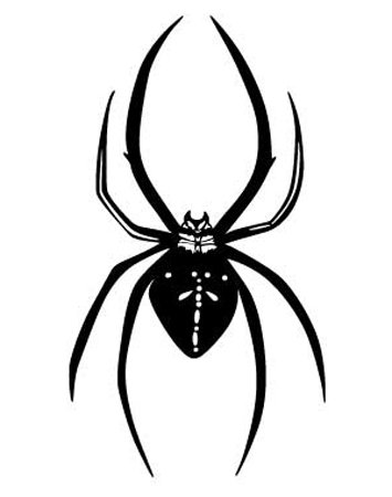 Animal Wall Decals - Spider - 24 Inch Removable Graphic front-957591