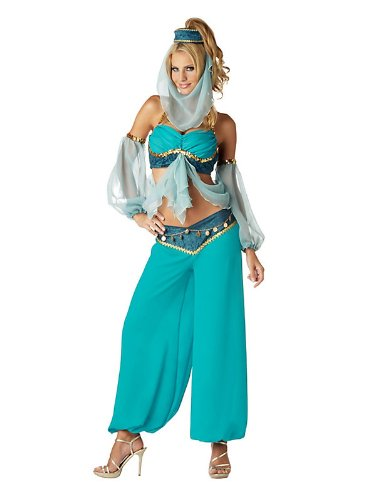 Harem's Jewel Costume - Large - Dress Size 10-14