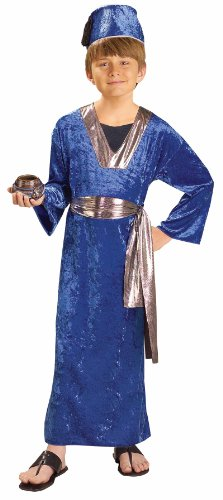 Forum Novelties Biblical Times Blue Wiseman Child Costume, Small front-680936