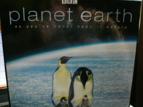 BBC PLANET EARTH Emporer Penguins with chicks