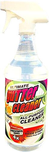 Gutter Edge Gutter Cleaner - Citrus Scented