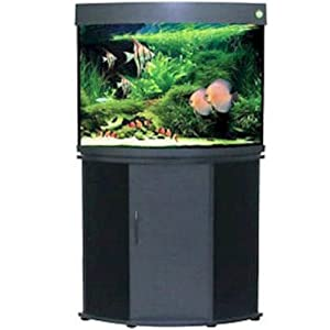 Compass Rose Collection Corner Aquarium and Stand, Black, 36-Gallon