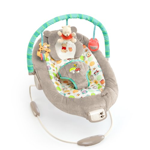 Why Should You Buy Disney Baby Winnie The Pooh Bouncer, Dots and Hunny Pots