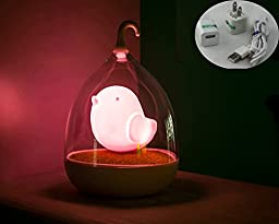 Glovion (Ac Version) Creative Birdcage Shape Portable Touch Control 3d Bird LED Night Lamp with Rotary Handle Soft Atmosphere Living Light Great Gift for Children &Girls (Pink)