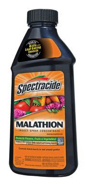 spectracide-malathion-insect-spray-concentrated-malathion-16-oz