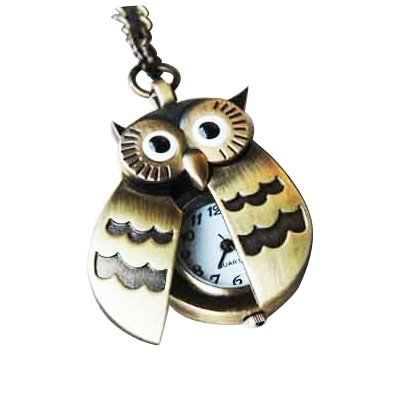 SODIAL(TM) Flappy Wings Owl Locket Watch Necklace