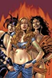 img - for Witches Volume 1 TPB (Marvel Heroes) book / textbook / text book