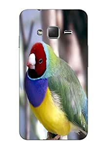 Case Cover Bird Printed Colorful Hard Back Cover For Samsung Z1