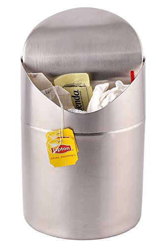 Countertop Garbage Can : Mini Countertop Trash Can, Brushed Stainless Steel, Swing Top Trash ...