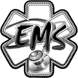 Gray EMS Stethoscope Star of Life Decal - 16