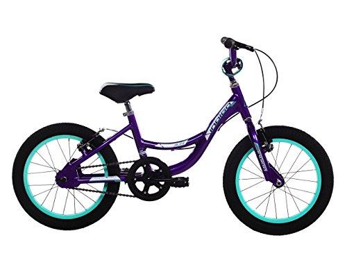 indigo-girl-glitz-bike-anodized-look-purple-small