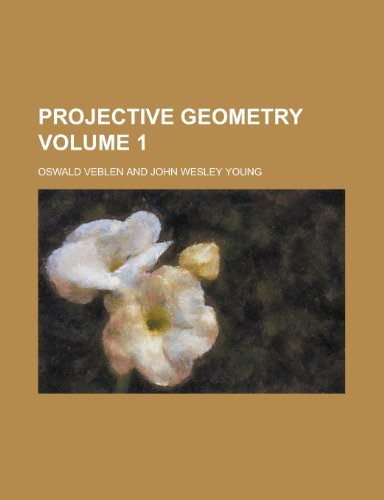 Projective Geometry Volume 1