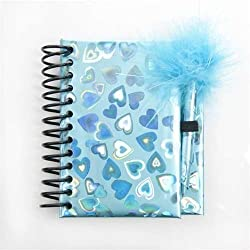 Blue Notebook and Pen Set