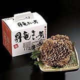 大野昇竜舞茸 2株(1株約500g)