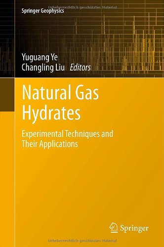 Natural Gas Hydrates: Experimental Techniques And Their Applications (Springer Geophysics)