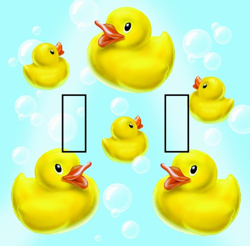 Rubber Ducky Plates front-411410