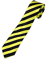 Zac's Alter Ego® Stripe School Tie For Fancy Dress, School Uniform/ Disco and Hen Party