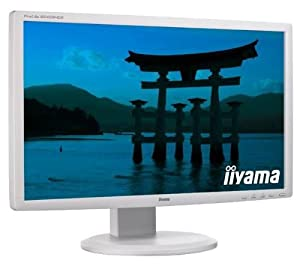 Iiyama TFT-Monitore ab 24 Zoll ProLite B2409HDS-W1 HDMI, DVI-D, Sound, Weiß