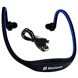Bluetooth Headphones with Mic SD Card Slot BS19C (Black/Blue)