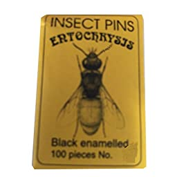 Insect Mounting Pins Pk of 100 Pins- Size 3
