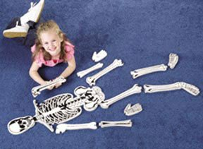 Picture of VN00054975 Learning Resources Skeleton Floor Puzzle; 15-piece; 4 ft. tall; Grade Levels K to 1 (B003VKSJHW) (Floor Puzzles)