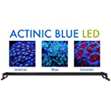 "Ecoxotic Panorama Marine Pro Led Striplight Kit 36"" Fusion 12000K/445NM Royal Blue 35 Watt"