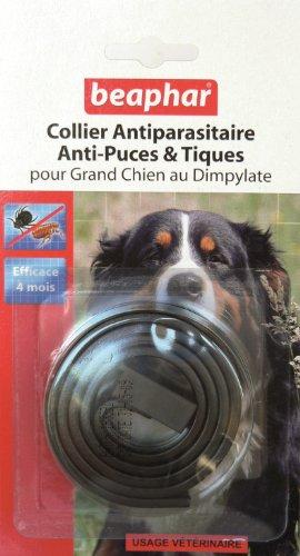 collier-marron-fonce-194018-pour-grand-chien-antiparasitaire-anti-puces-et-tiques-beaphar
