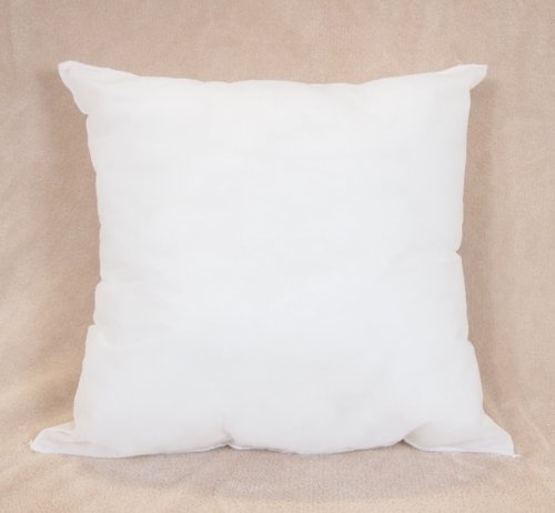 Lowest Prices! 22x22 Pillow Form Insert