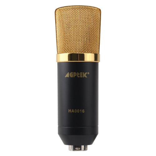 Agptek® Black 1 Vocal Sound Studio Recording Cardioid Condenser Microphone Mic Dynamic +Shock Mount Package (This Item Should Function With Indenpendent Sound Card)