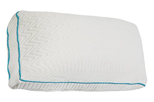 Home With Comfort Premium Bamboo Pillow With Shredded Memory Foam