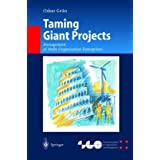 Taming Giant Projects: Management of Multi-Organization Enterprises